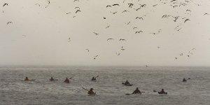 sea kayak Plockton St Kilda adventure
