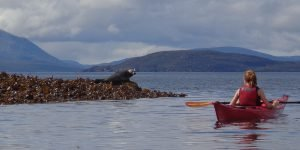 sea kayak plockton Scottish Sea Kayaking